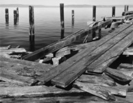 Pier and Pilings, Dickman Lumber Mill; Tacoma, Washington